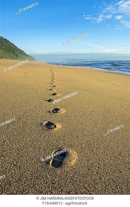 Footprints in the sand, Kohaihai Beach, Karamea, New Zealand