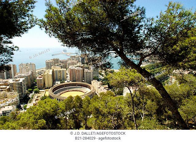 Malagueta quarter. Málaga. Spain