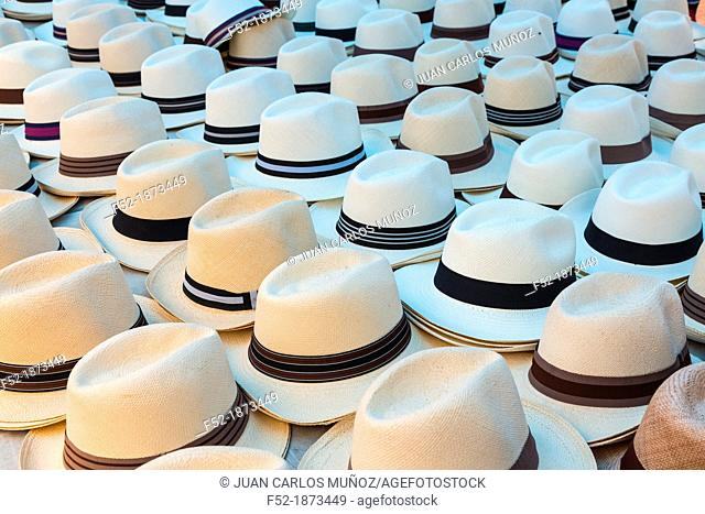 Panama hat, France Square, Panama City, Panama, Central America, America