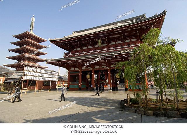 Tokyo, Japan, Sensoji, Asakusa Kannon Temple, Spring morning, Sunny, Blossoms foreground, Temple Pagoda, Temple entrance gateway, Elaborate Torii, Huge lanterns