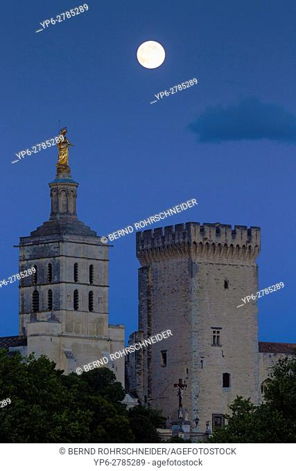 Papal palace (Palais des Papes) and cathedral Notre Dame at night with full moon, Avignon, France