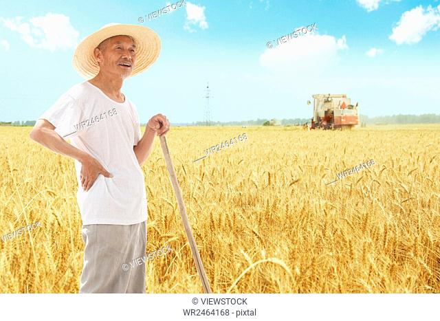 Farmer harvesting in field