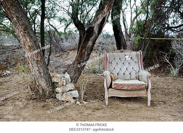 Mexico, Aguascalientes State, Old Chair Next To Tree; Aguascalientes