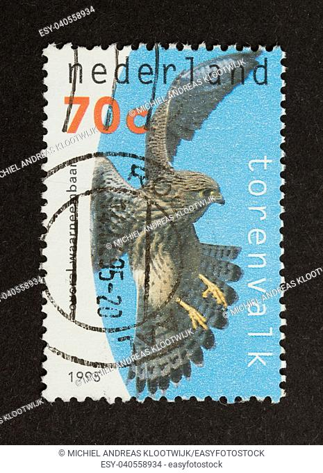 HOLLAND - CIRCA 1990: Stamp printed in the Netherlands shows a falcon, circa 1990