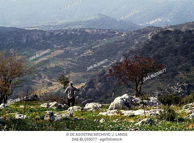 Landscape, farmer in the foreground, Axos, Crete, Greece