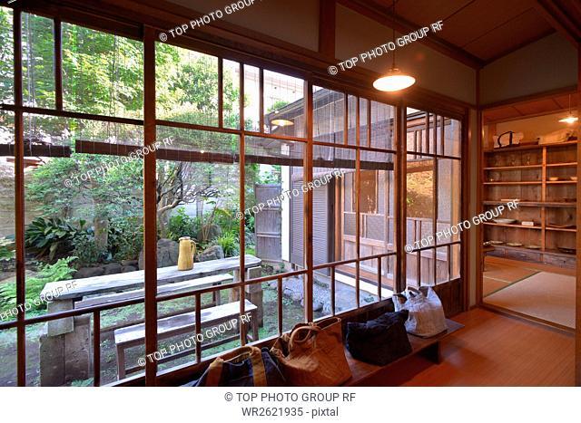 Stewartia Pseudocamellia;Setagaya;Tokyo;Japan