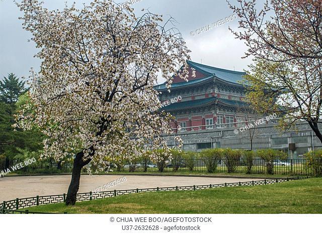 Gyeongbokgung Palace, National Folk Museum of Korea