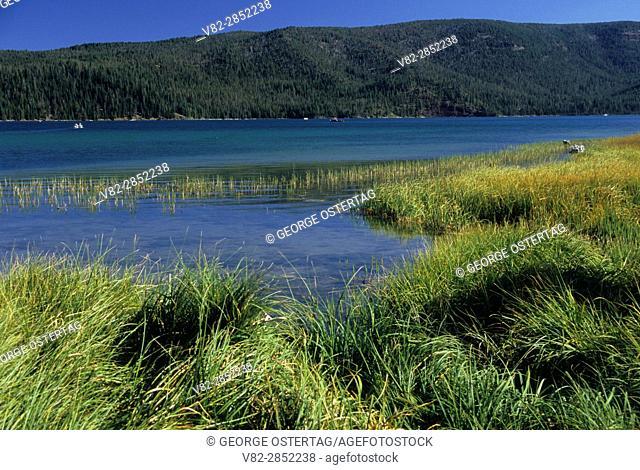 Paulina Lake, Newberry National Volcanic Monument, Oregon