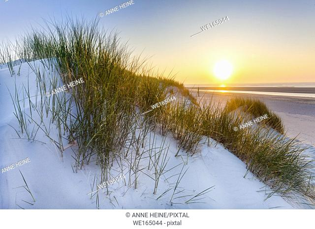 Dunes with setting sun, Baltrum,East Friesland,Germany