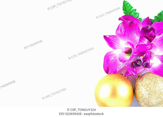 purple orchid and plastic ball