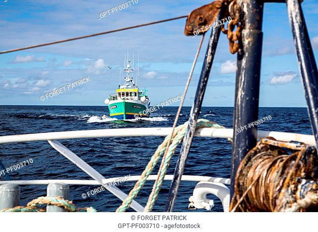 THE BOAT 'LE GAMIN' APPROACHING TO PICK UP THE MERCHANDISE, SEA FISHING ON A SHRIMP TRAWLER OFF THE COAST OF SABLES-D'OLONNE, (85) VENDEE, LOIRE REGION, FRANCE