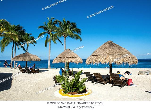 View of the beach with coconut palm trees and palapas at Cozumel Chankanaab National Park on Cozumel Island near Cancun in the state of Quintana Roo