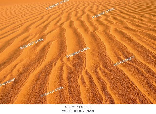 North Africa, Algeria, Sahara, sand ripples, texture on a sand dune