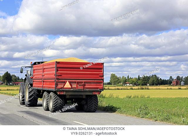 Tractor pulls red agricultural trailer with a full load of harvested grain along country road on a sunny day in autumn harvest time