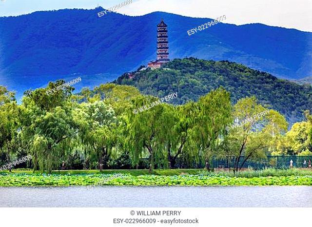 Yue Feng Pagoda Lotus Garden Willow Trees Summer Palace Beijing, China