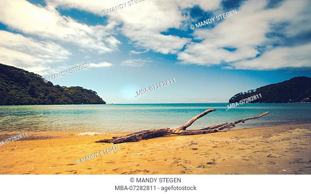 New Zealand, Abel Tasman National Park, sandy beach