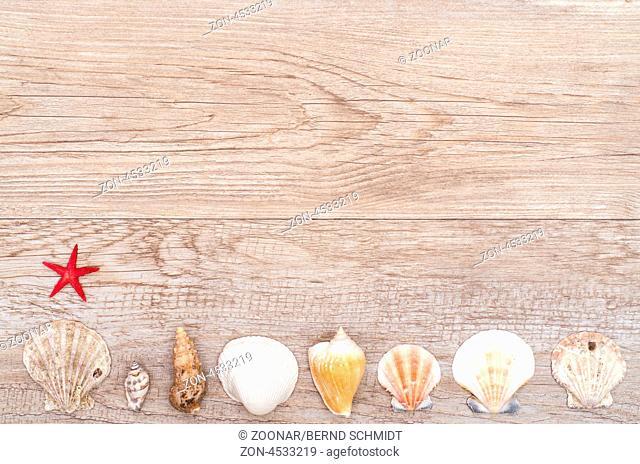 Roter Seestern und Muscheln auf einem alten Brett aus Holz