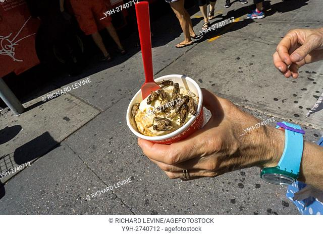 A cup of ice cream with a topping of crickets is seen at a promotion for The Economist magazine in New York. Apparently eating insects is beneficial for both...