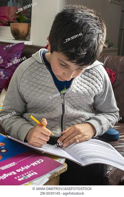 Boy 10 years old revising English at home