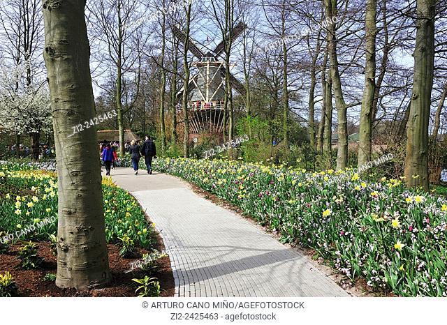 Garden and windmill. Keukenhof, Lisse, The Netherlands