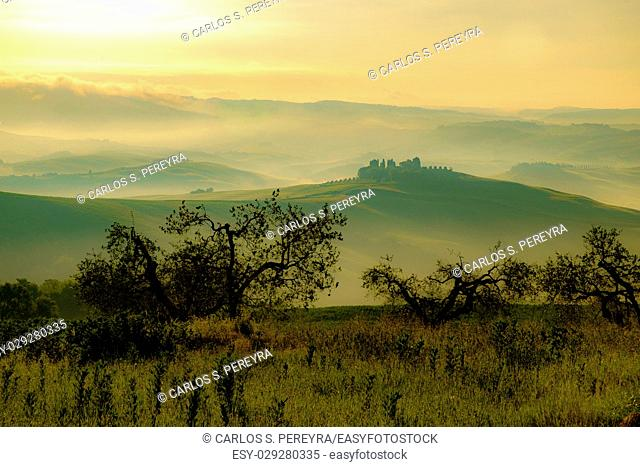 Val d'Orcia in Italy's Tuscany province Europe