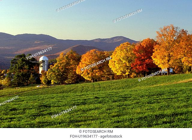 Vermont, fall, foliage, A scenic view of the mountains and a field with a row of colorful maple trees on Sparrow Farm in East Montpelier