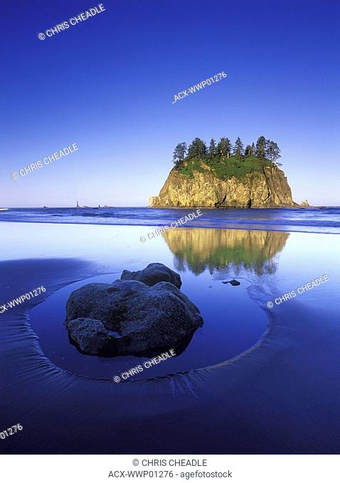 USA, Washington State, Olympic National Park, rock in sand on Shi Shi Beach with sea stacks