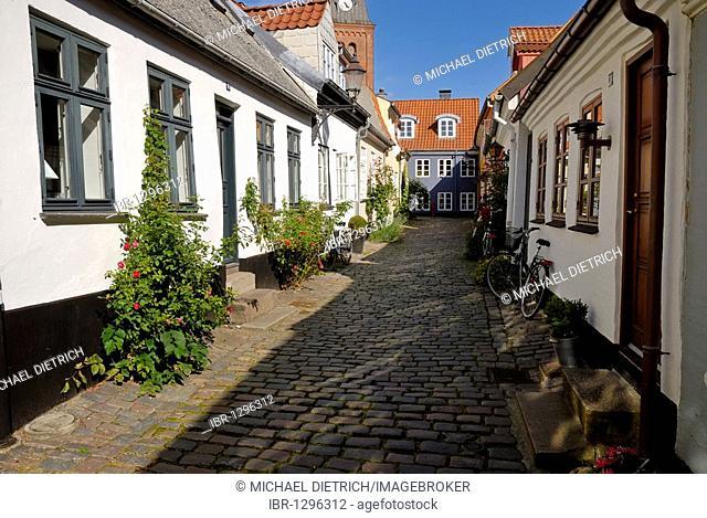 Cobblestone street in the historic town of Aalborg, Ålborg, Nordjylland region, Denmark, Scandinavia, Europe