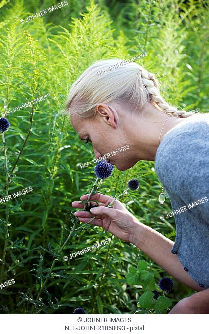 Woman smelling thistle
