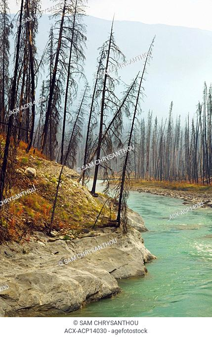 Vermilion River, Floe Lake Trail, Kootenay National Park, British Columbia, Canada