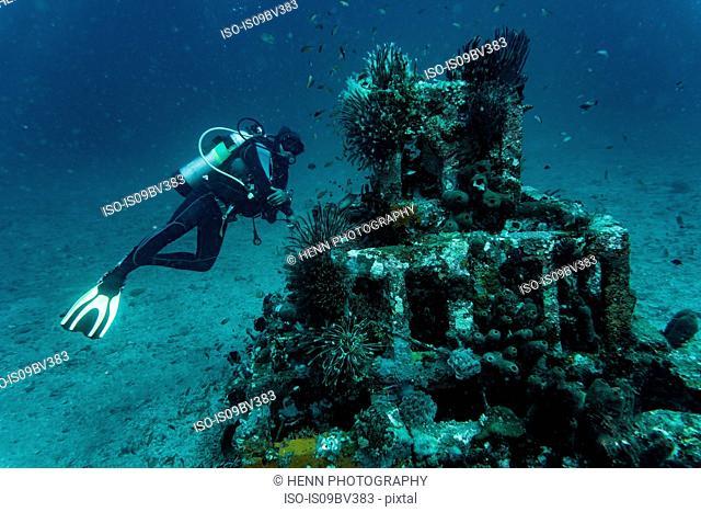 Scuba diver checking out artificial reef off coast, Tulamben, Bali, Indonesia