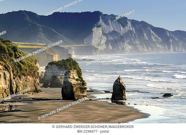 White Cliffs Beach at low tide, rocks in the surf, Ahititi, Taranaki, North Island, New Zealand