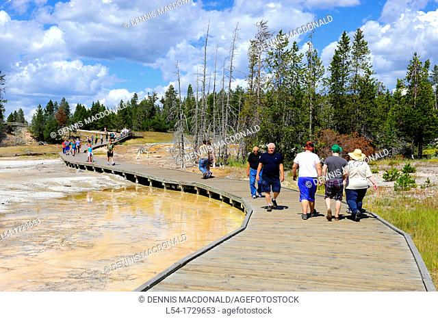 Painted Pots Yellowstone National Park Wyoming WY United States