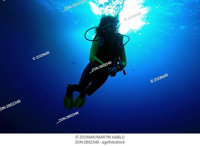 Taucher im Freiwasser, Rotes Meer, Ägypten, Scuba diver, Red Sea, Aegypt