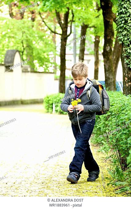 Little schoolboy walks to school, holding flowers, Munich, Bavaria, Germany