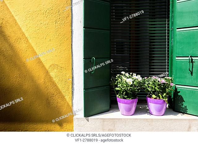 Burano, Venice, veneto, North East Italy, Europe. A typical window with yellow wall
