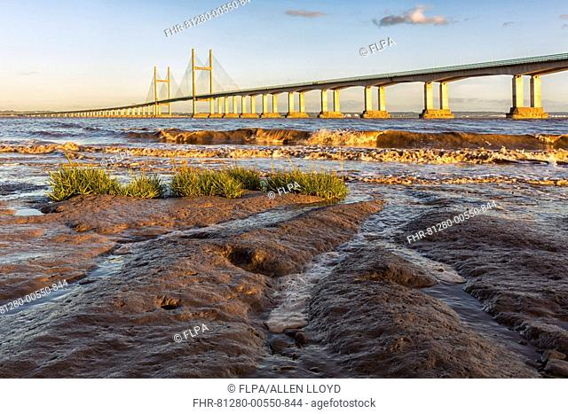 View of road bridge over river at sunset, viewed from Diver's Rock at Sudbrook, Second Severn Crossing, River Severn, Severn Estuary, Monmouthshire, Wales