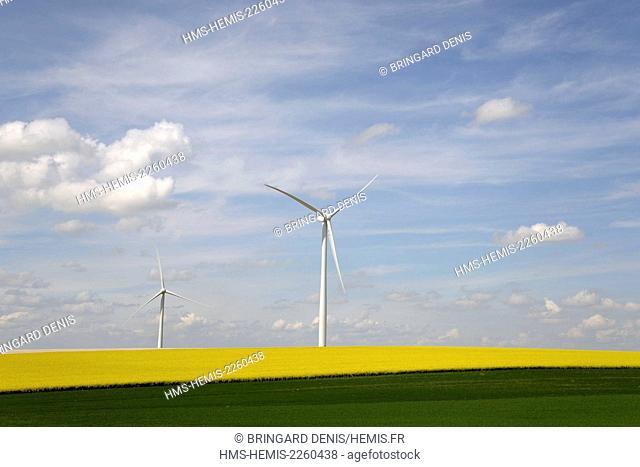 France, Aisne, field of rapeseed, wind turbines