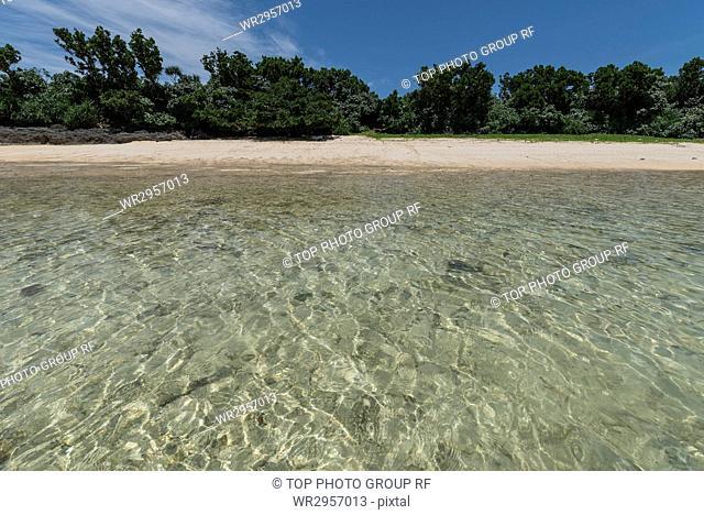 Sea of Hatoma, Okinawa, Japan