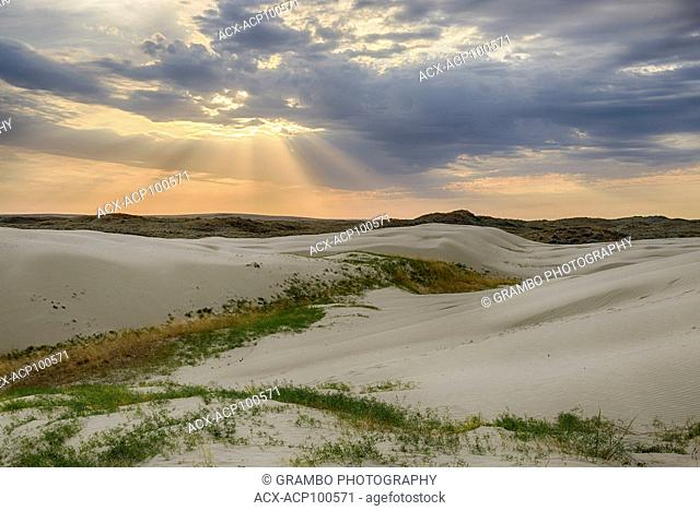 Great Sand Hills, southwestern Saskatchewan, Canada