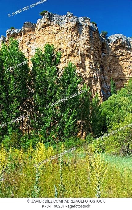 Hoces del Riaza Natural Park. Montejo de la Vega de la Serrezuela. Segovia province. Castilla y Leon. Spain