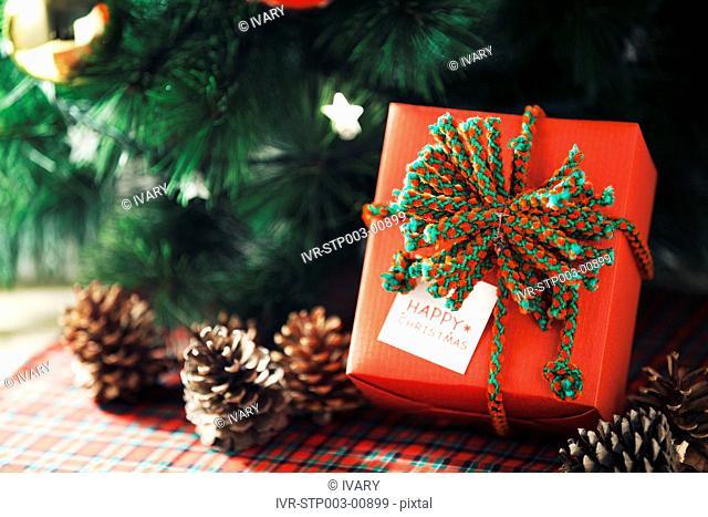 Christmas Gift Near Tree