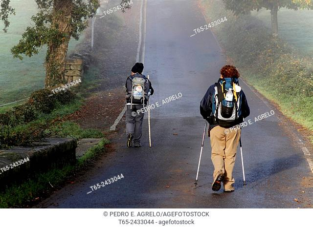 Pilgrims on the road at Ligonde, near Palas de Rei, Camino de Santiago, Lugo province, Galicia, Spain