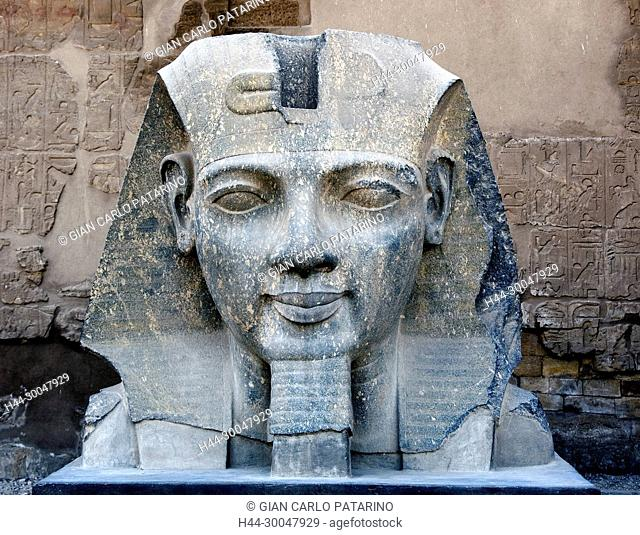 Luxor, Egypt. Temple of Luxor: the big head of the pharaoh Ramses II the Great (1303-1212 b.C.)