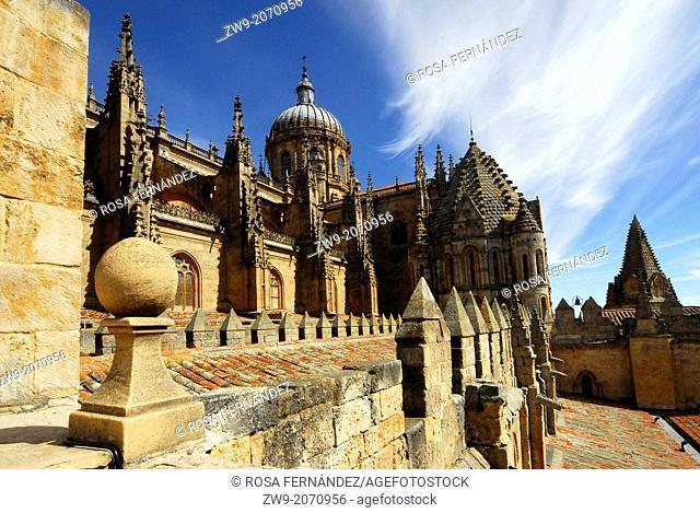 New Cathedral of Salamanca and Torre del Gallo, Castilla y Leon