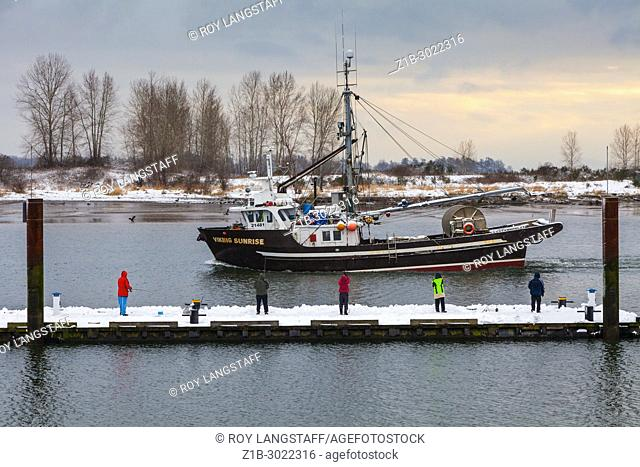People fishing from a floating dock on the banks of the Fraser River in Steveston. British Columbia. Canada