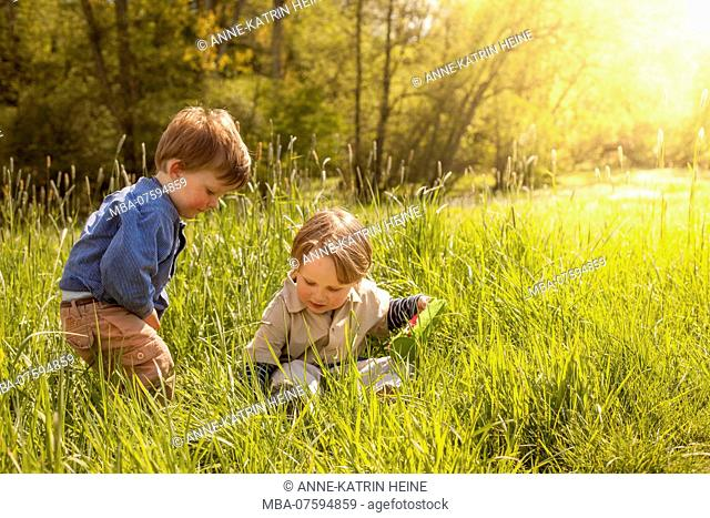 Brothers sitting in grass laughing, Hennef-Lichtenberg, Germany