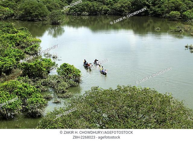 Ratargul Swamp Forest is a freshwater swamp forest located in Gowainghat, Sylhet, Bangladesh. It is the only swamp forest located in Bangladesh and one of the...
