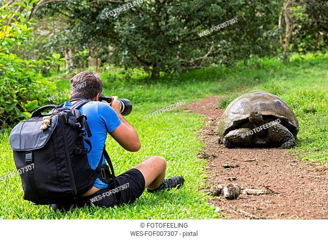 Ecuador, Galapagos Islands, Santa Cruz, man photographing Galapagos giant tortoise
