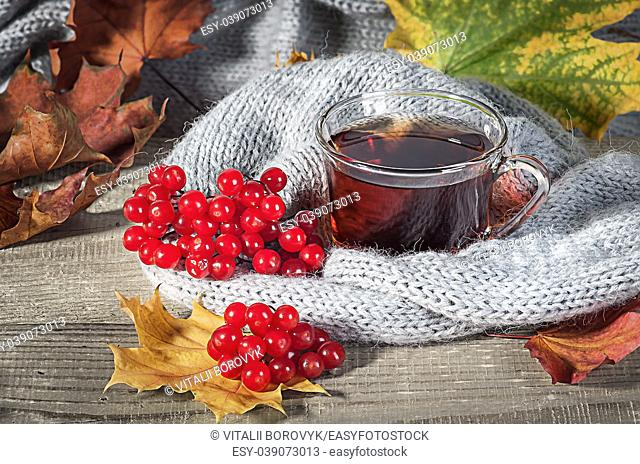 Black tea with a viburnum. Autumn maple leaves on a wooden table next to a knitted scarf